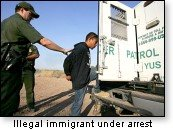 Illegal Alien Under Arrest